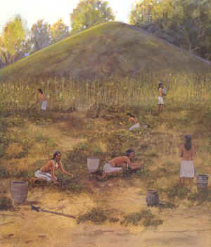 early-farming.jpg